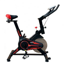 Bicicleta Spinning Randers Arg-863 Disco Inercia 10kg